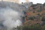 L'incendio di Monte Bonifato: parte la conta dei danni