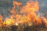 Sorpreso ad appiccare fiamme, arrestato ex forestale a Ragalna