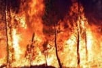 Emergenza incendi in Sicilia