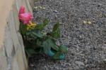 Incidenti: oggi a Vittoria oggi i funerali di Ilenia Segreto