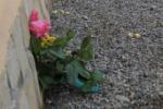 Incidenti stradali, un morto sulla Palermo-Mazara del Vallo