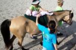 Il cavallo per la riabilitazione Sedute gratis per dieci disabili