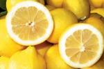 Limone di Siracusa Igp, decreto per il Consorzio di tutela