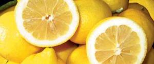 Limone di Siracusa Igp protagonista a tavola con 90 ambasciatori in Italia e Francia