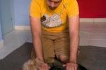 Relax a 4 zampe: ecco i massaggi anche per cani e gatti