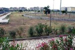Siracusa, la gestione del parco di Bosco Minniti: progetto con l'associazione di Vezzali