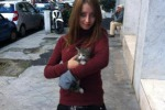 Gattina nel motore di un'auto: salvata grazie a un cellulare