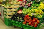 Il biologico piace sempre di più La Sicilia prima per coltivazioni