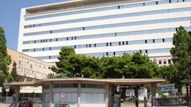 ospedale sant'antonio abate, sanità, Trapani, Economia