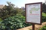 Palermo, cani al parco Cassarà senza museruola