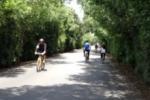Catania, i parchi cittadini aprono ai privati
