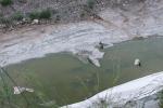 Fuoriuscita di percolato dall'ex discarica «Allarme ambientale» a Serradifalco