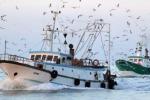 Mazara, com'è inutile il fermo biologico I pescatori: noi in pausa, Tunisi no