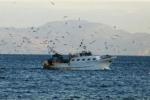 Peschereccio di Mazara sequestrato a Tunisi, c'è uno spiraglio