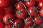 """Pachino, l'allarme degli agricoltori: """"Taroccano il nostro pomodoro"""""""