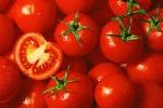 """Pachino, """"La riserva di Pantani pone a rischio l'agricoltura"""""""