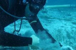 Antico cannone di una nave ritrovato nelle acque di Pantelleria