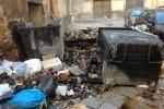 Pachino, 5 mesi senza stipendio: raccolta ferma