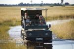 Voglia di Safari in Africa Kenya, boom di richieste