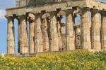 Selinunte, il parco archeologico dei bambini