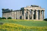 Selinunte, il parco archeologico di domenica chiude tutto il giorno