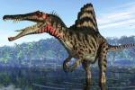 Dieci anni di studi di terra e di mare, la doppia vita dello «spinosauro»